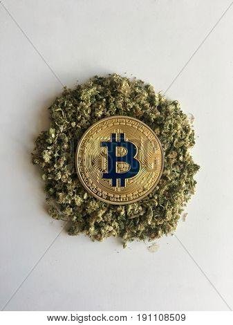 Gold Bitcoin Coin