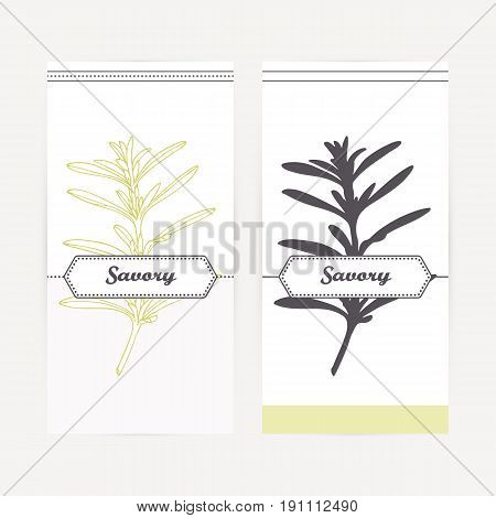 Savory seasoning. Hand drawn branch with leaves in outline and silhouette style. Spicy herbs retro labels collection for food packaging or kitchen design. Vector illustration