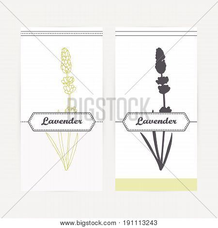 Lavender seasoning. Hand drawn branch with leaves in outline and silhouette style. Spicy herbs retro labels collection for food packaging or kitchen design. Vector illustration