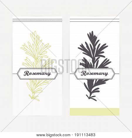 Rosemary seasoning. Hand drawn branch with leaves in outline and silhouette style. Spicy herbs retro labels collection for food packaging or kitchen design. Vector illustration