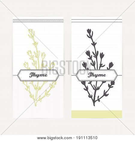 Thyme seasoning. Hand drawn branch with leaves in outline and silhouette style. Spicy herbs retro labels collection for food packaging or kitchen design. Vector illustration