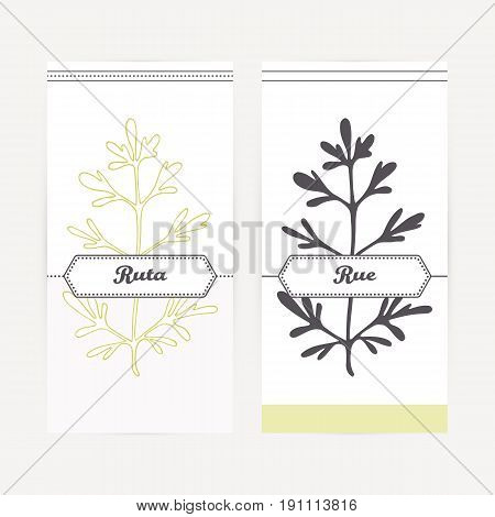 Ruta or rue seasoning. Hand drawn branch with leaves in outline and silhouette style. Spicy herbs retro labels collection for food packaging or kitchen design. Vector illustration