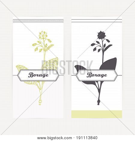 Borage seasoning. Hand drawn branch with leaves and flowers in outline and silhouette style. Spicy herbs retro labels collection for food packaging or kitchen design. Vector illustration