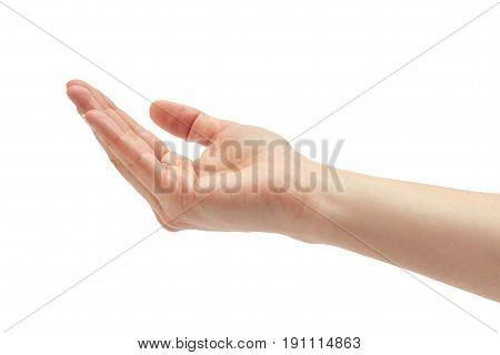 Beautiful Female Hand Prays Gesture. Isolated On White Background