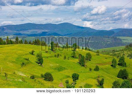 Carpathians mountain landscape in nice day