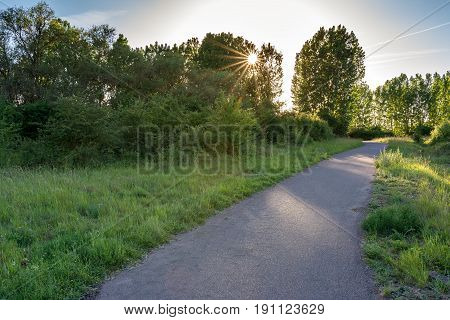 French countryside - Lorraine. A small quiet footpath along the Moselle at sunset