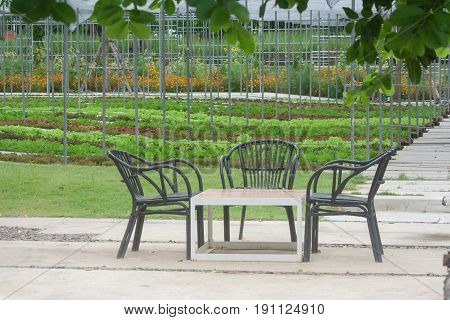 Wooden chair and table in beautiful garden background at outdoor.