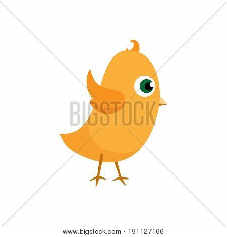 Easter chicks. Happy Easter isolated on white background. Vector design element eps10