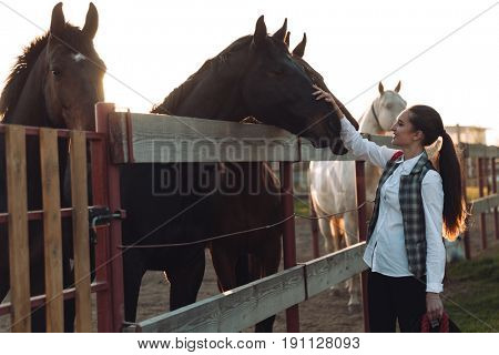Image of pretty young woman standing outdoors and take care of her horse. Looking aside.