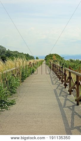 Long Cycle Path Without Anyone In The Nature Reserve
