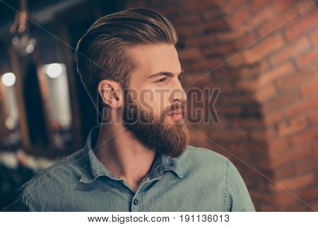 Advertising Barbershop Concept. Profile Side Portrait Of Harsh Handsome Red Bearded Young Guy. He Ha