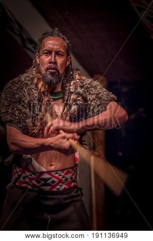 NORTH ISLAND, NEW ZEALAND- MAY 17, 2017: Takami Maori man with traditionally tatooed in his face, wearing traditional dress at Maori Culture holding in his hands a wooden stick, and doing a traditional Maori dancing, Tamaki Cultural Village, New Zealand.