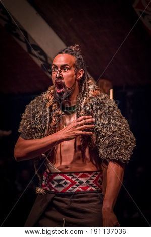 NORTH ISLAND, NEW ZEALAND- MAY 17, 2017: Tamaki Maori man screaming with traditionally tatooed face in traditional dress at Maori Culture, Tamaki Cultural Village, New Zealand.