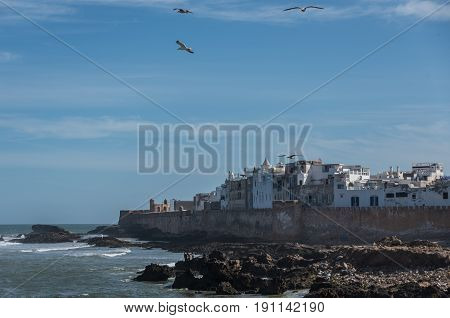 View To Essaouira Old City Rampant And Ocean From Scala Du Port ( Northern Skala ) Fort Side With Se