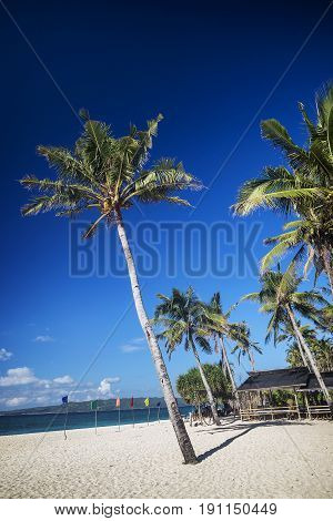 puka beach in tropical paradise boracay island philippines