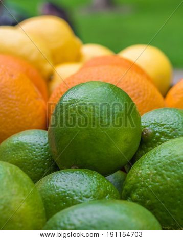 Vertical closeup photo of a bunch of limes, oranges and lemons with the limes in focus in the foreground
