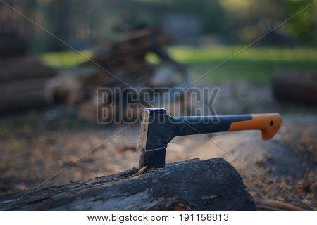 Chopping wood in the forest in details