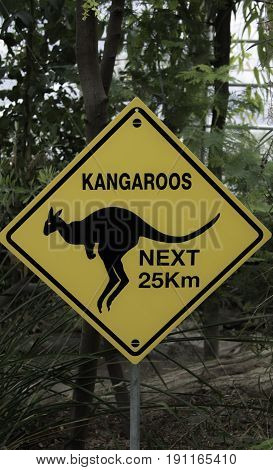 Yellow sign with the drawing in black of a kangaroo  - text saying