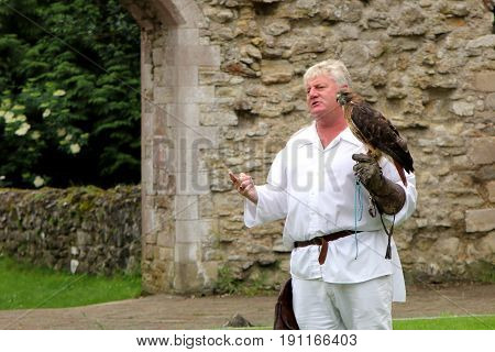 Beaulieu, Hampshire, Uk - May 29 2017: Falconer With His Buzzard Explaining Falconry