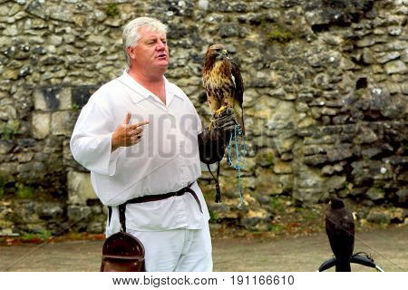Beaulieu, Hampshire, Uk - May 29 2017: Falconer With His Buzzard And Another Bird, Explaining Falcon