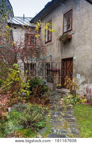 Old wooden door and brick wall in Viena