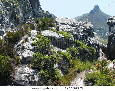VIEW FROM TABLE MOUNTAIN, CAPE TOWN, SOUTH AFRICA, WITH LIONS HEAD IN THE BACK GROUND 27laj