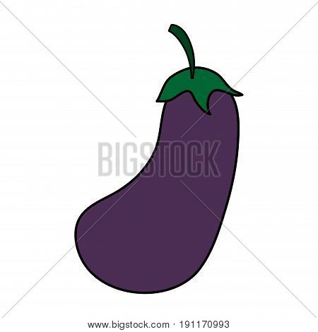 Delicious vegetable eggplant icon vector illustration design graphic flat