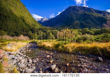 Small creek in a Milford Sound National Park Fjordland, in New Zealand.