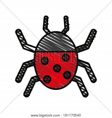 Wonderful ladybug insect illustration icon vector design graphic doodle