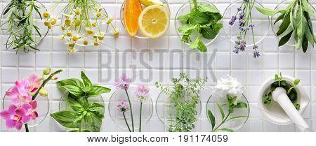 Fresh herbs on white masaic background