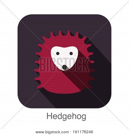 Hedgehog Face Flat Icon Design. Animal Icons Series.