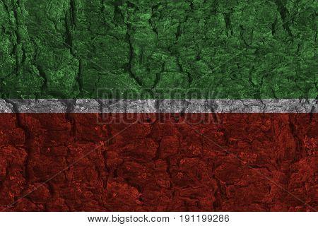 Grunge Republic of Tatarstan national flag on pine bark texture background