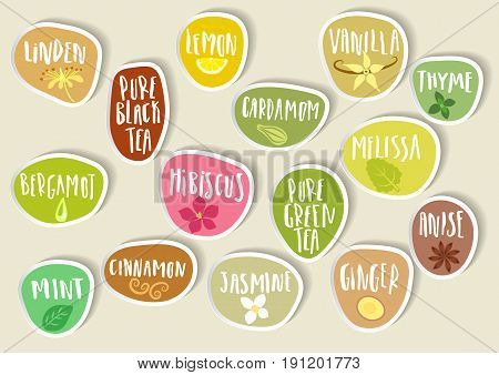 Vector set of trendy paper stickers for tea packing. Various natural organic additives for drinks with handwritten annotation and sketches of plants.