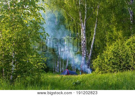 Lot of tourists in the birch forest and blue smoke from a campfire on a summer day.