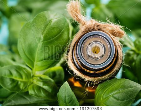 Brown glass bottle of basil essential oil with fresh green basil leaves. Top view or flat lay. Copy space.