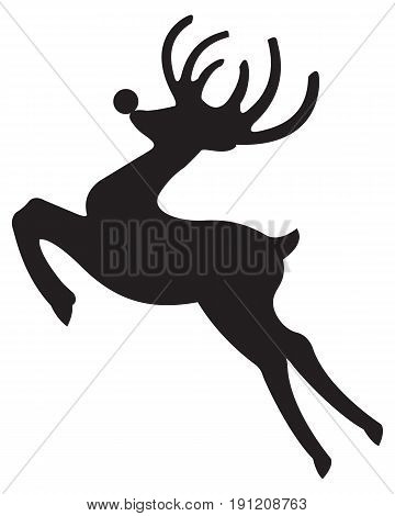 Deer isolated  wild animal mammal horn isolated