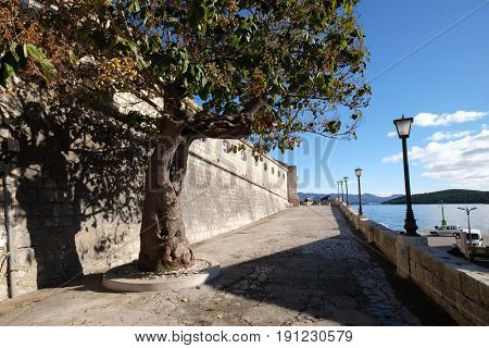 KORCULA, CROATIA - NOVEMBER 09: Seafront view at picturesque medieval Dalmatian town Korcula, Croatian culture and historic destination on November 09, 2016.