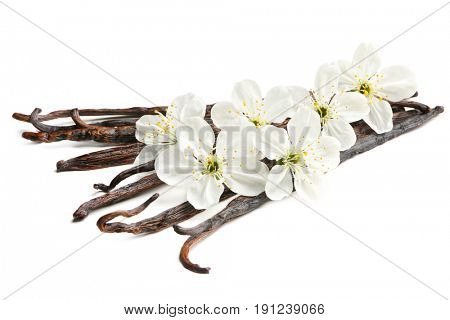 Dried vanilla sticks and flowers on white background