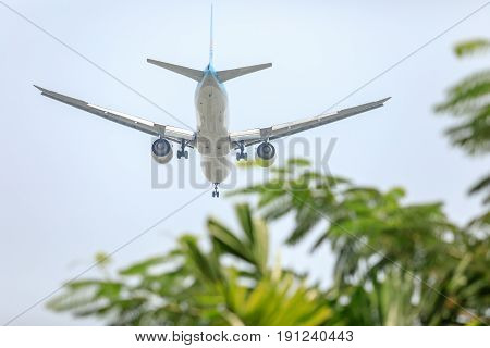Air Plane of on the sky landing to the Suvanabhumi airport with blurry tree leaf.