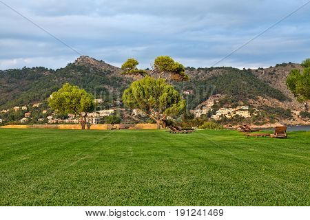 Lawn with sun loungers on the background of mountains