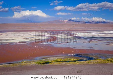 Laguna Honda in sud Lipez Altiplano reserva Eduardo Avaroa Bolivia poster