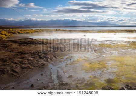 Lake In Sol De Manana Geothermal Field, Sud Lipez Reserva, Bolivia