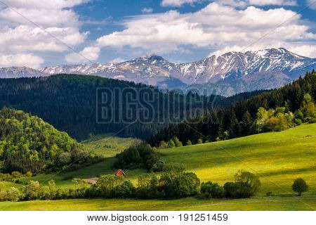 Nicely floodlit spring landscape snow-capped mountains in the background national park Mala Fatra in Slovakia Europe.