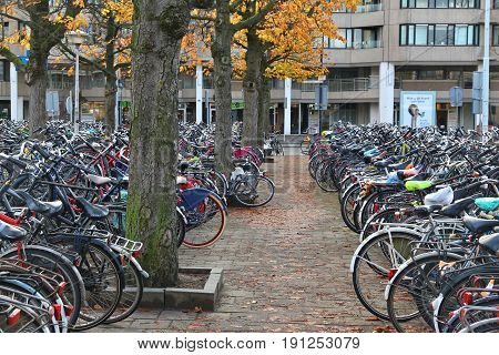 Eindhoven Bicycle Parking