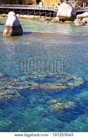 Pier  In Thailand Kho Tao Bay Abstract Of    Water