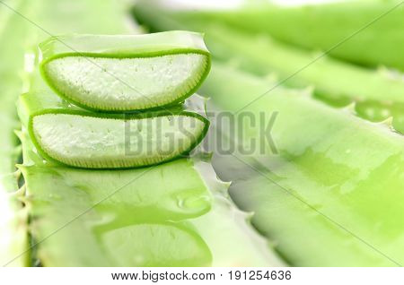 Cut Aloe Vera Leaves On Green Background.