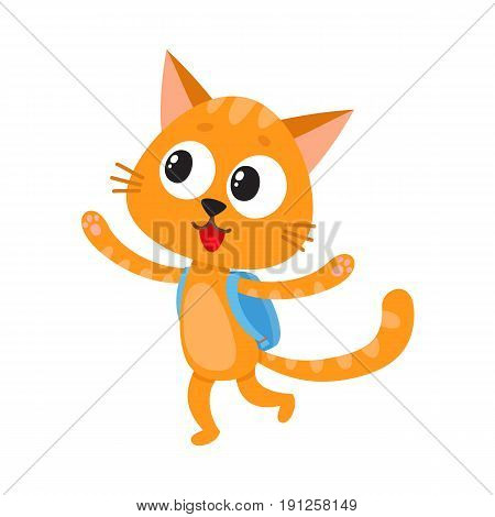 Cute little cat, kitten student character with backpack happy to be back to school, cartoon vector illustration isolated on white background. Little cat, kitten student with backpack, back to school
