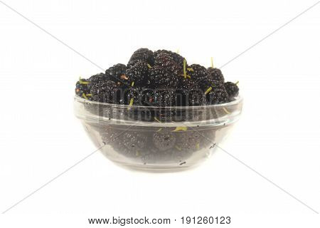 the a mulberry on on a white background