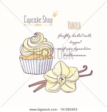 Hand drawn cupcake with doodle buttercream for pastry shop menu. Vanilla flavor. Vector illustration