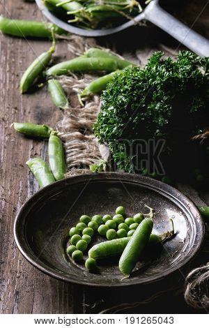Young organic green pea pods and peas in vintage plate and bundle of parsley over old dark wooden planks with sackcloth textile background. Dark rustic style. Harvest, healthy eating.